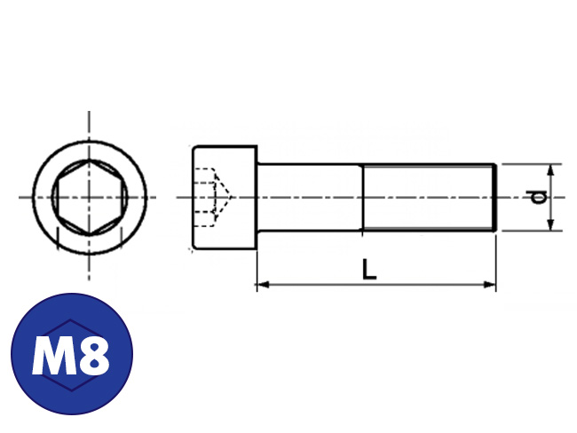 rvs cilinderkopbout m8