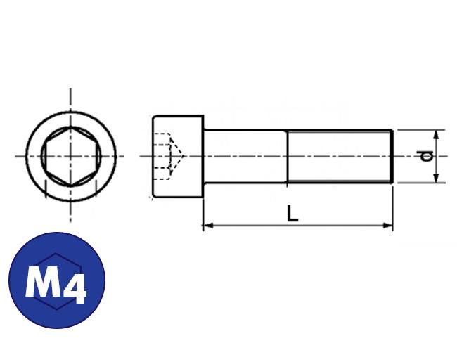 Bout & moer rvs|Cilinderkopbout|M4 Online bestellen | €7,75 transportkosten